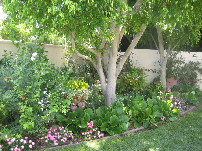 Cottage Garden Landscape Design Contractor