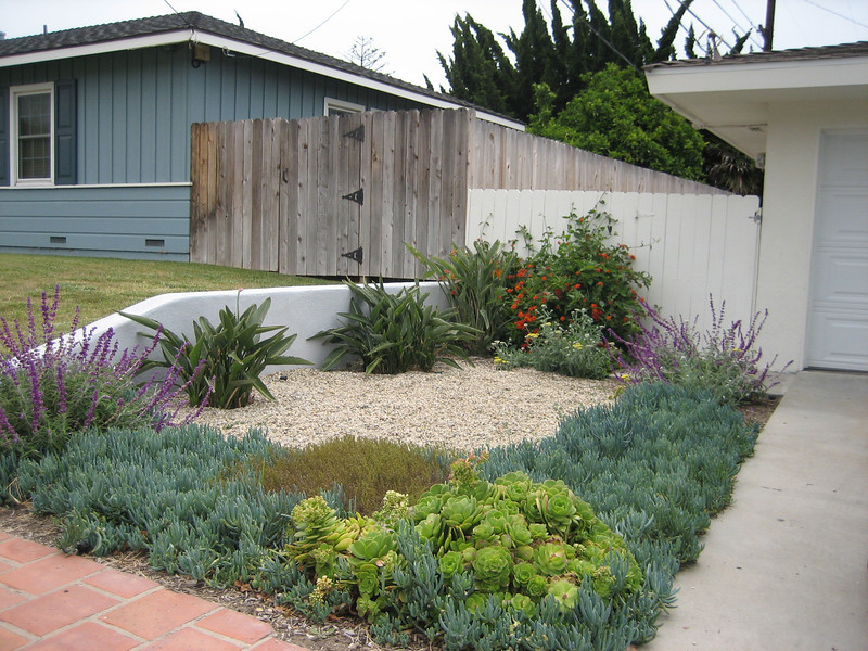 Drought Tolerant Landscape Design Photo Gallery Drought Resistant Landscaping Ideas